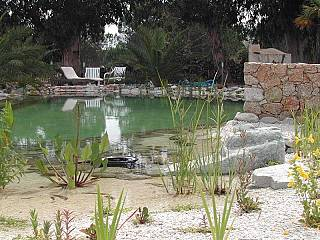 piscines-naturelles/thermes/bassin-naturel-corse-1/couleur-nature-piscine-bassin-naturel-pierres-calvi-corse_1.jpg