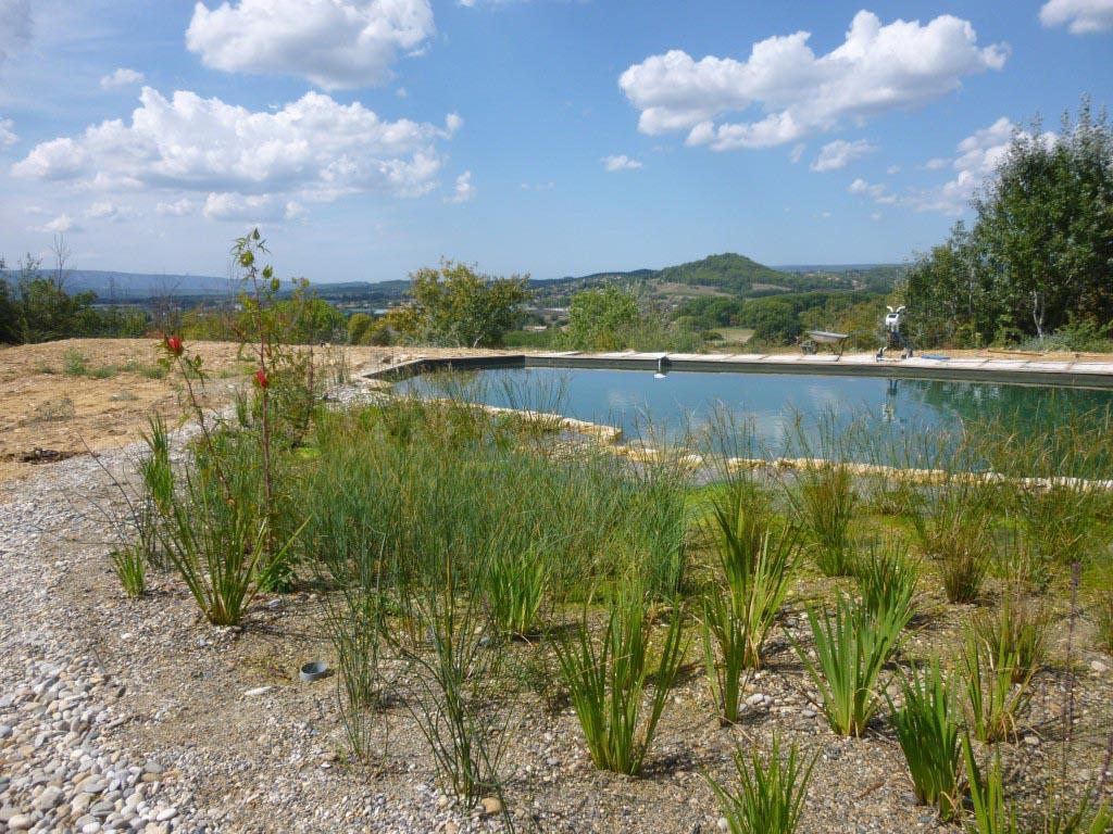 Bassin De Baignade Autoconstruction baignade naturelle dans le lubéron transformation piscine