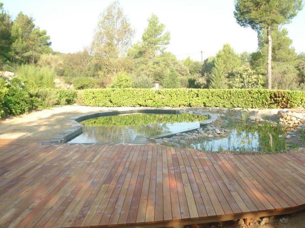 construction terrasse bois en robinier pour une piscine naturelle. Black Bedroom Furniture Sets. Home Design Ideas