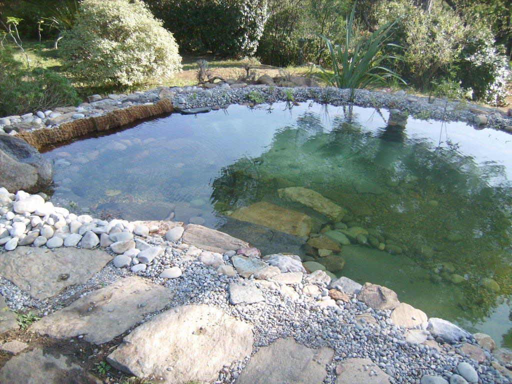création d'un bassin aquatique pour plantes et poissons à grimaud var