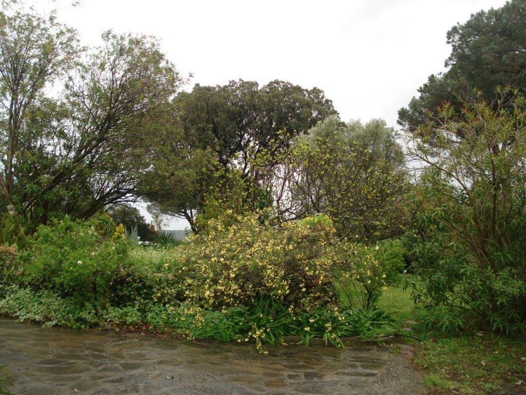 Cr ation entretien d 39 un jardin au naturel dans le respect for Entretien jardin 66