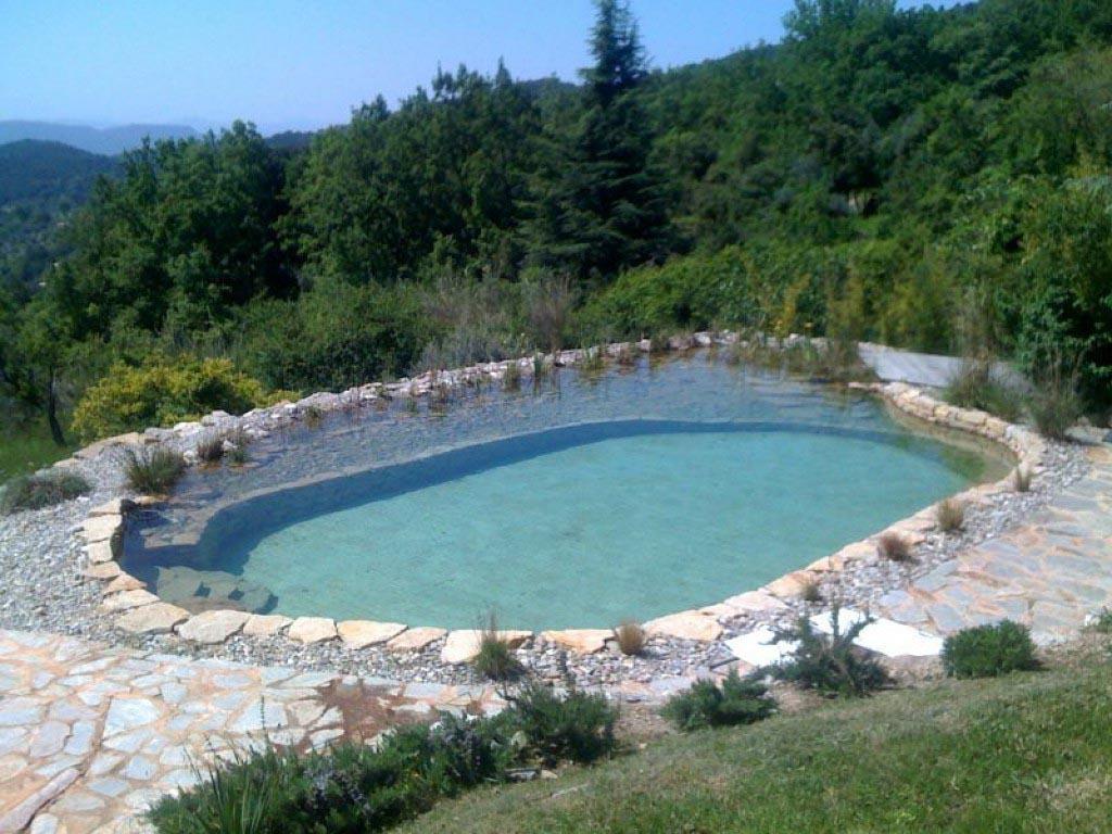 Bassin De Baignade Autoconstruction piscine naturelle, comment ça marche ?