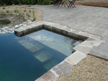 construction terrasse bois pin exotique robinier terrasse de piscine. Black Bedroom Furniture Sets. Home Design Ideas