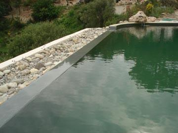 Piscine traditionnelle transformée en piscine naturelle